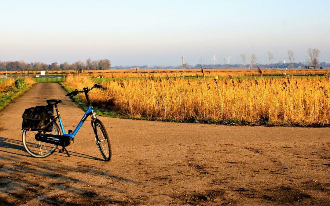 Kerékpárral vendégségben – civil információs nap